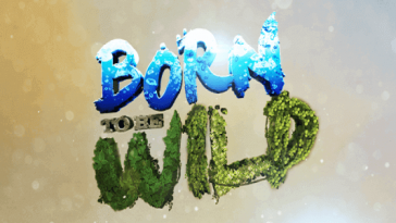 Born To Be Wild December 9, 2018 Pinoy Network