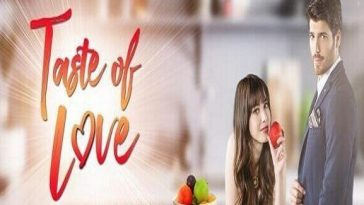 Taste of Love December 6, 2019 Pinoy Teleserye