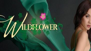 Wildflower April 3, 2020 Pinoy Network